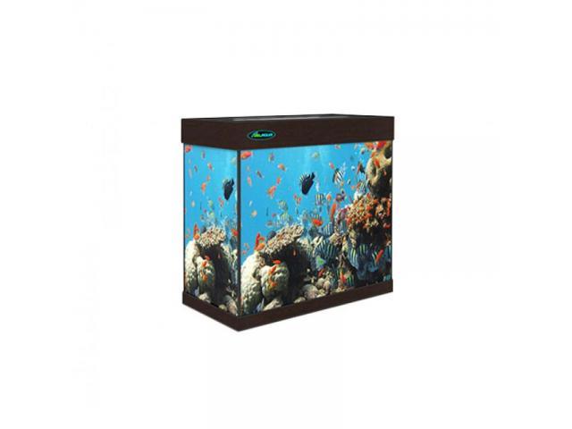 Магазин аквариумов ArovanAqua в Костроме. Купить аквариумы, террариумы, оборудование, рыбки - 2/4