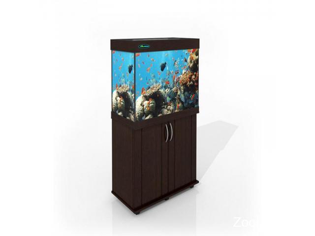 Магазин аквариумов ArovanAqua в Костроме. Купить аквариумы, террариумы, оборудование, рыбки - 3/4