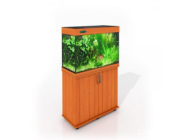 Магазин аквариумов ArovanAqua в Костроме. Купить аквариумы, террариумы, оборудование, рыбки - 4/4